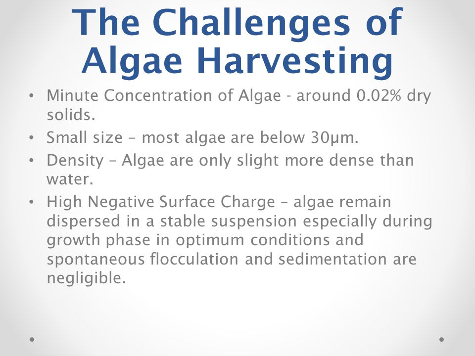 The Challenges of Algae Harvesting