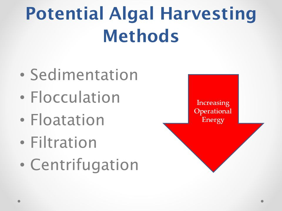 Potential Algal Harvesting Methods