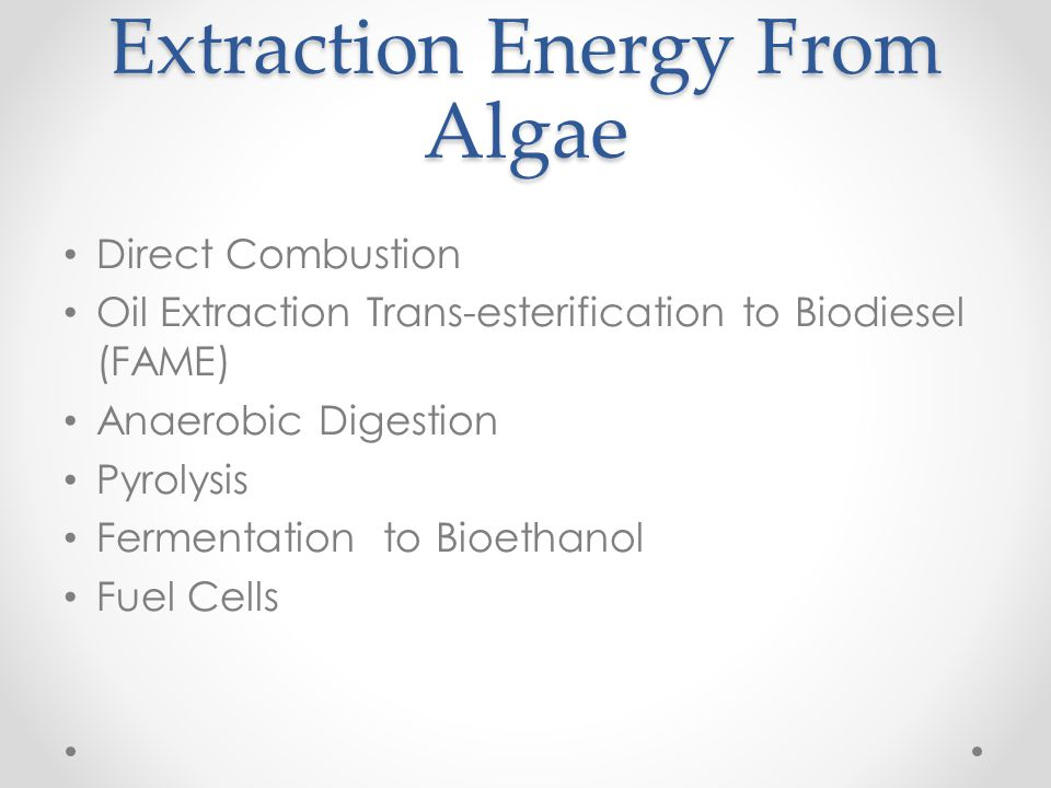 Extraction Energy From Algae