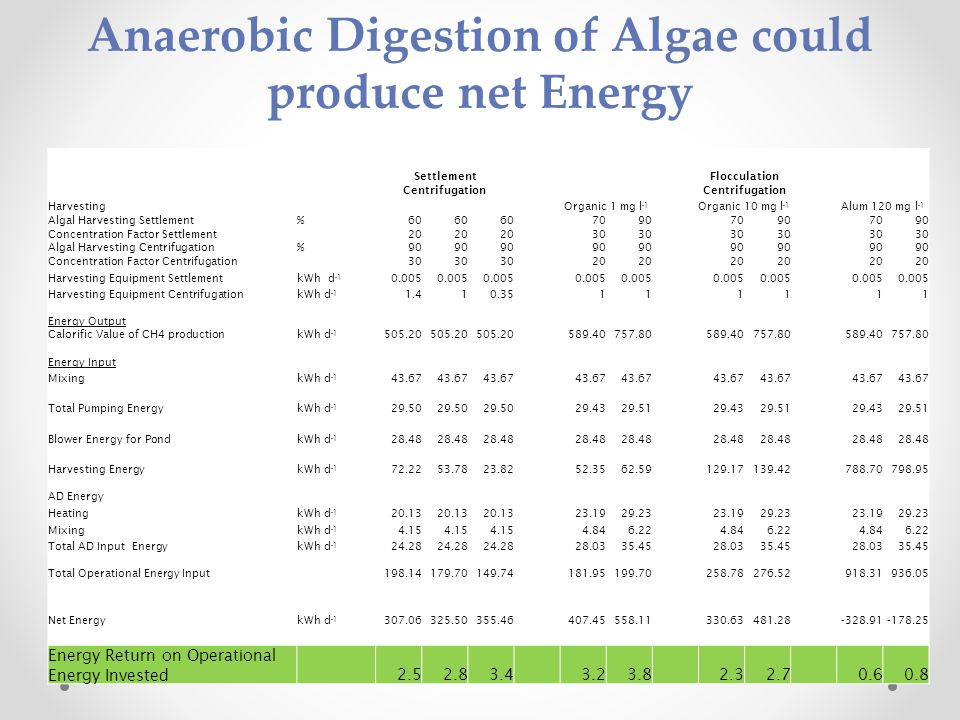 Anaerobic Digestion of Algae could produce net Energy