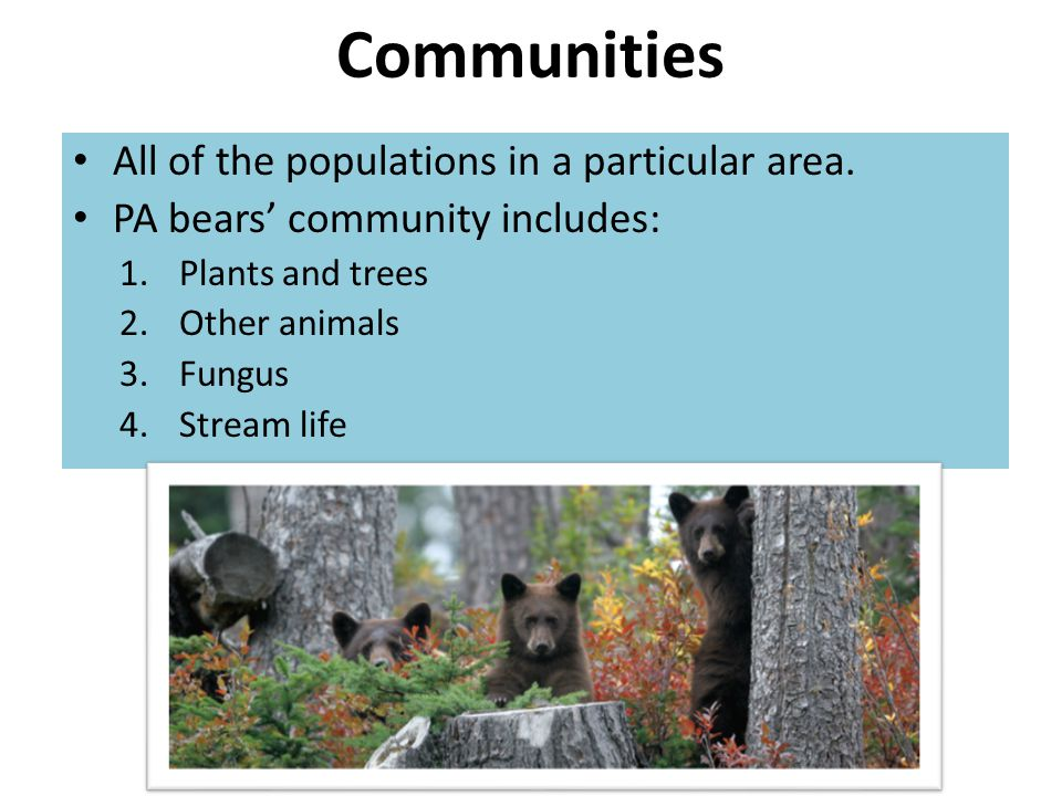 Communities All of the populations in a particular area.