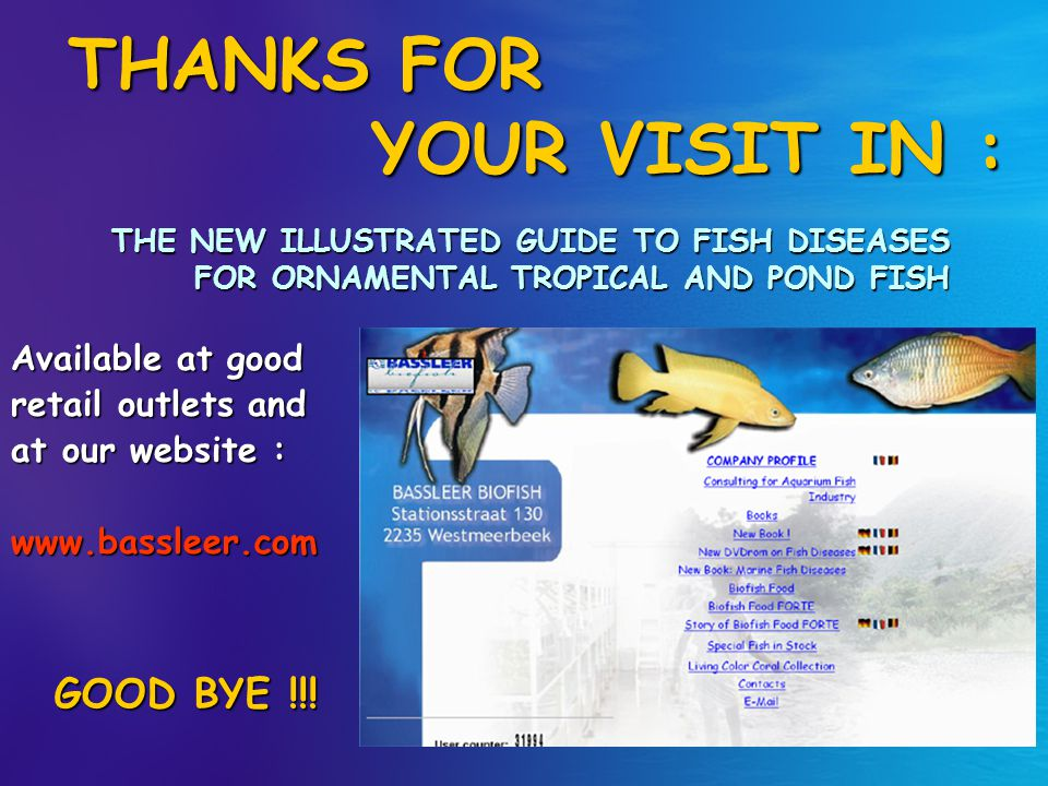THANKS FOR YOUR VISIT IN :