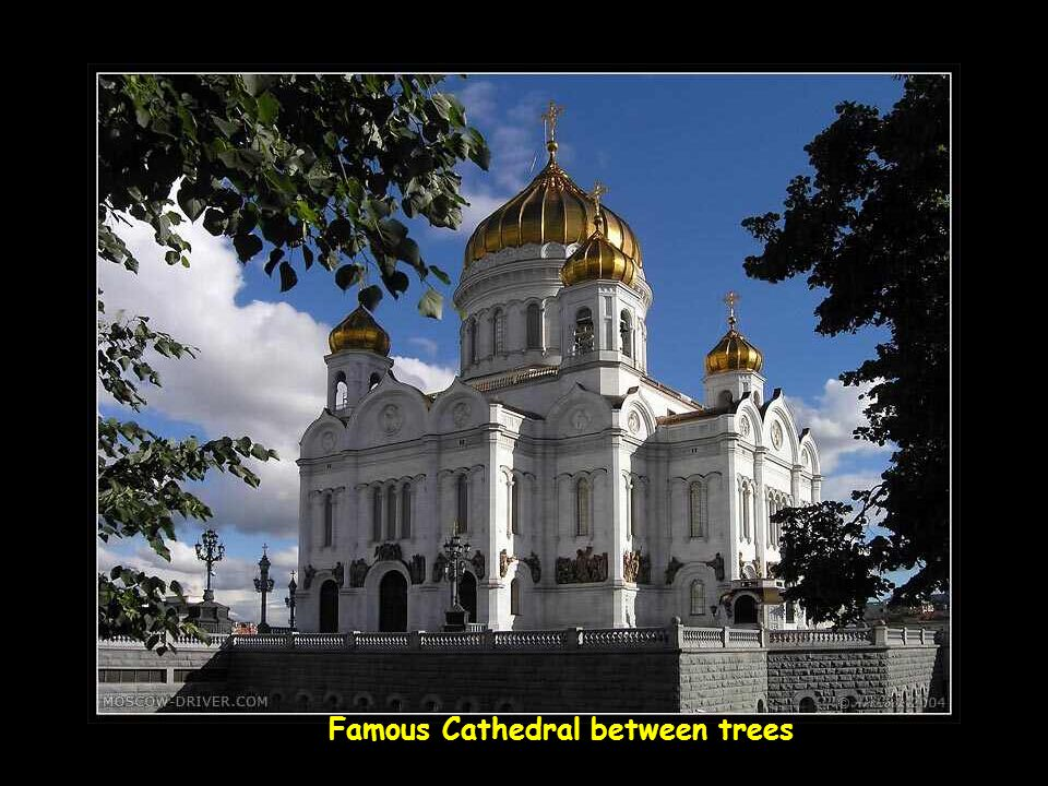 Famous Cathedral between trees