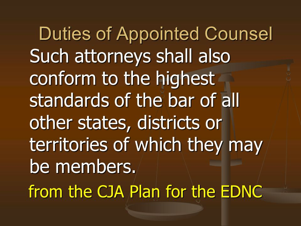 Duties of Appointed Counsel