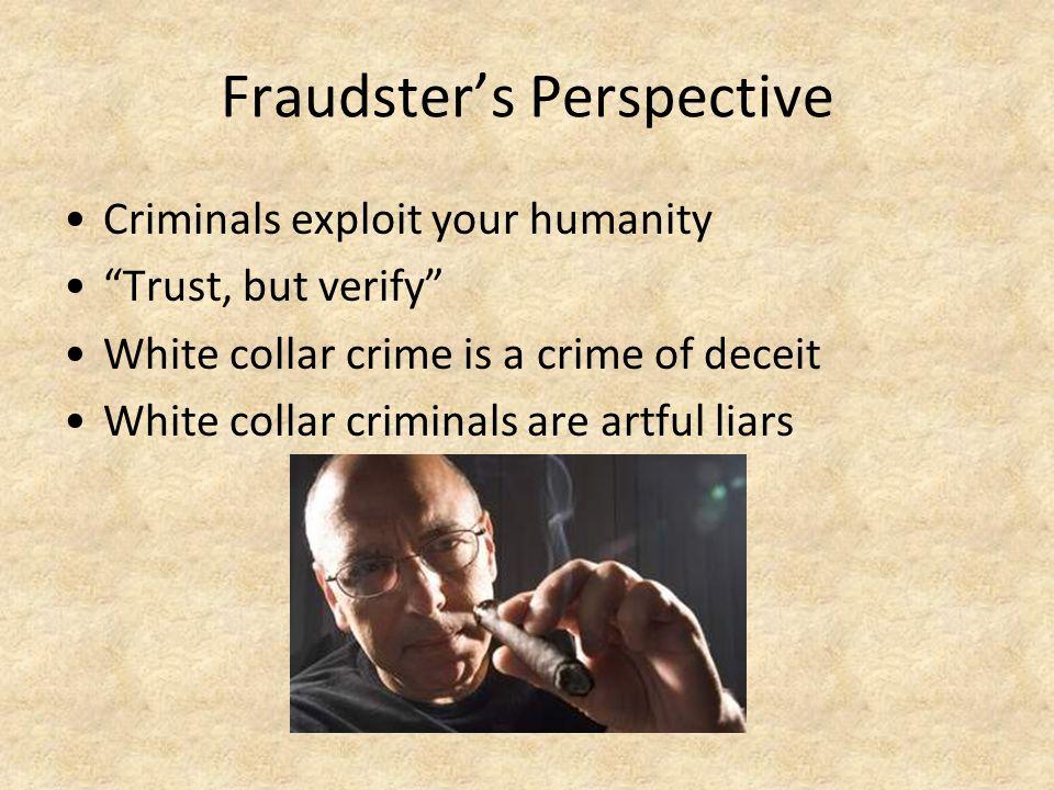 Fraudster's Perspective