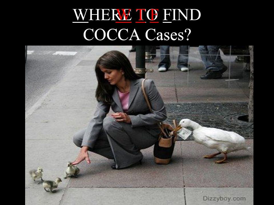 WHERE TO FIND COCCA Cases
