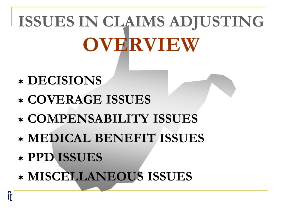 ISSUES IN CLAIMS ADJUSTING OVERVIEW