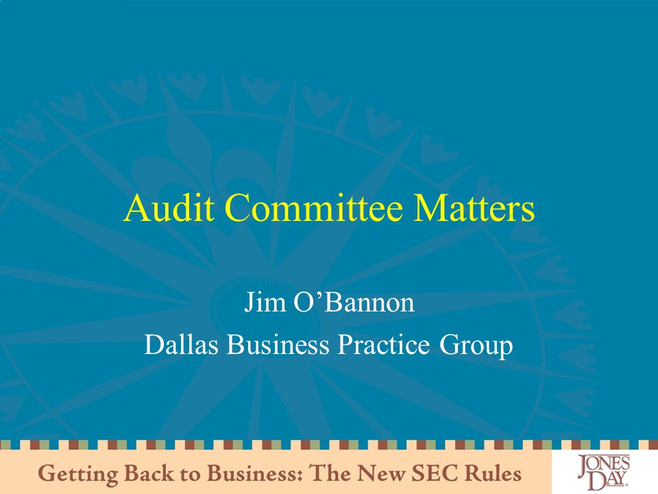 Audit Committee Matters