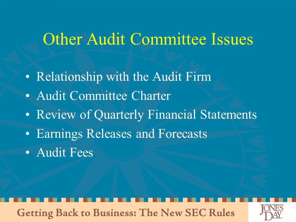 Other Audit Committee Issues