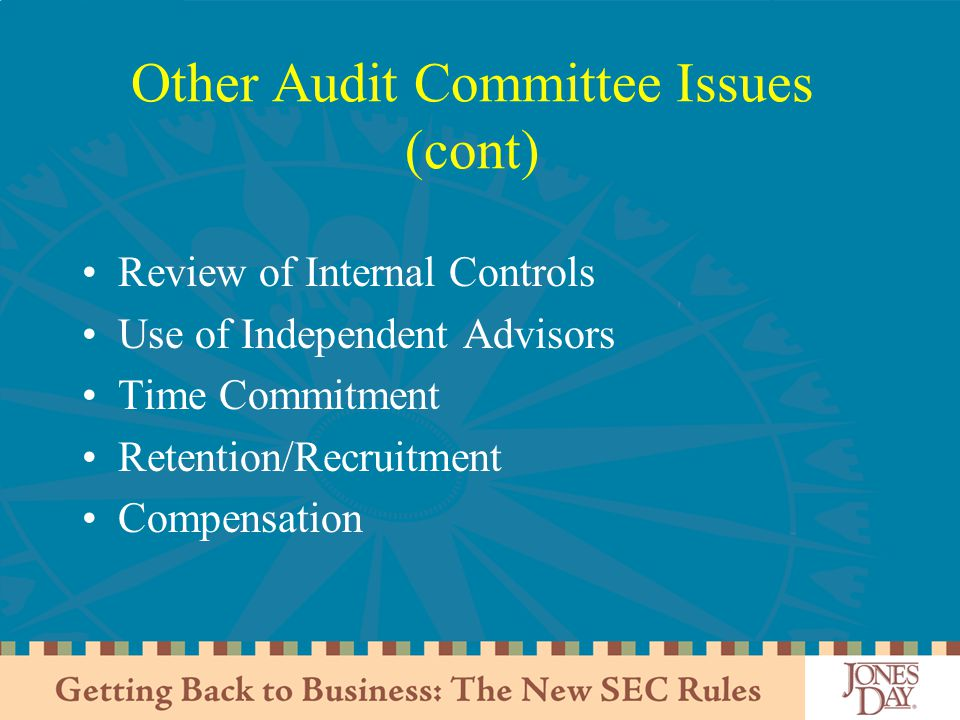Other Audit Committee Issues (cont)