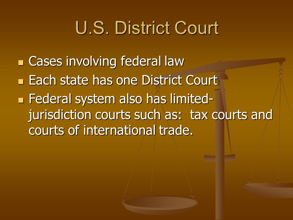 U.S. District Court Cases involving federal law