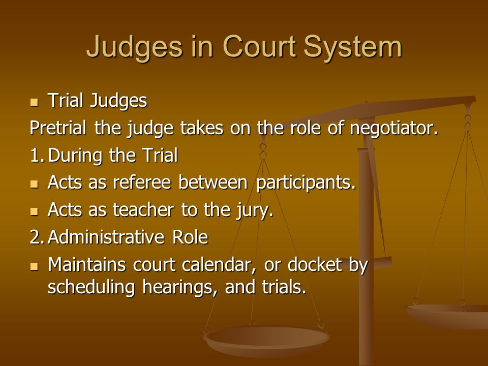 Judges in Court System Trial Judges