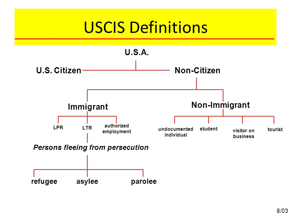 USCIS Definitions U.S.A. U.S. Citizen Non-Citizen Non-Immigrant