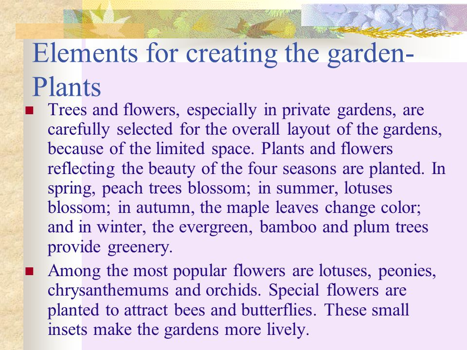 Elements for creating the garden-Plants