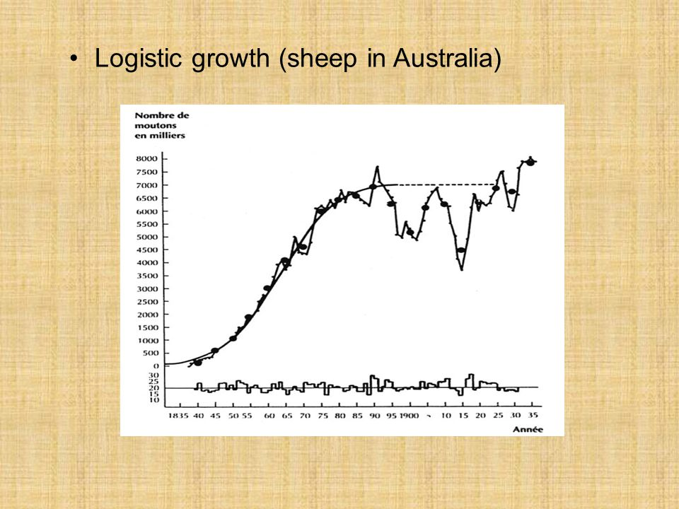 Logistic growth (sheep in Australia)