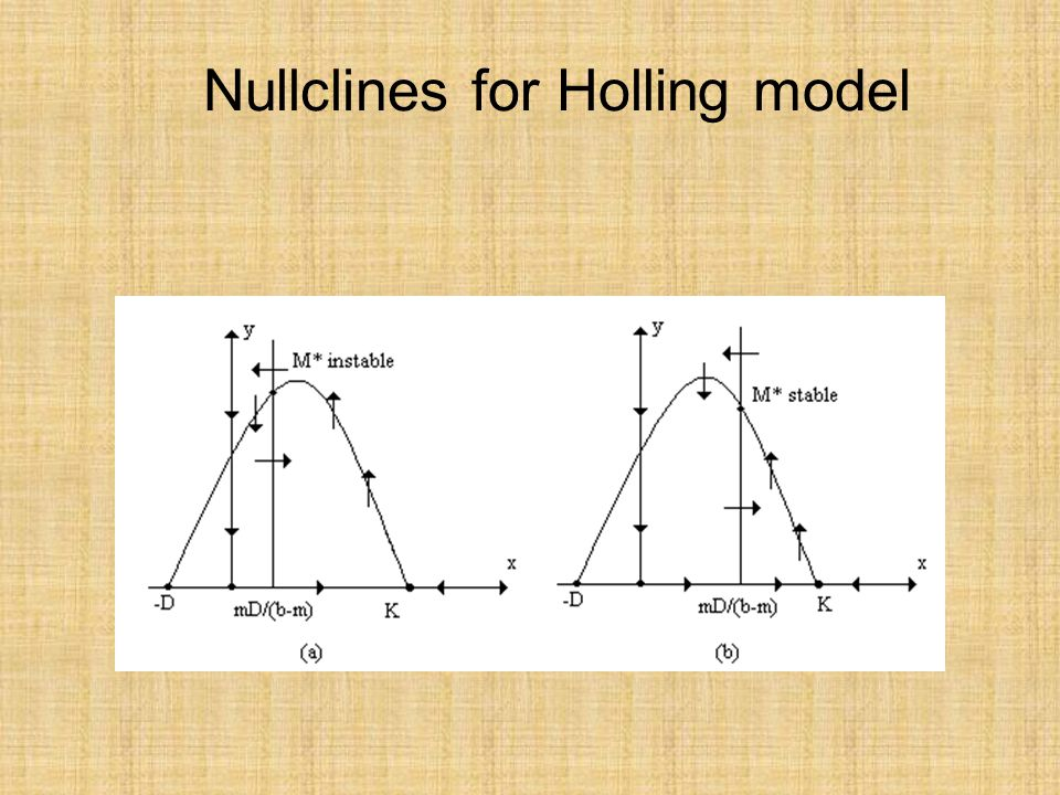Nullclines for Holling model