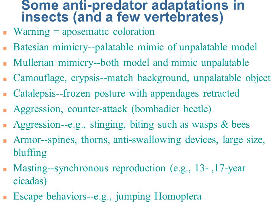 Some anti-predator adaptations in insects (and a few vertebrates)