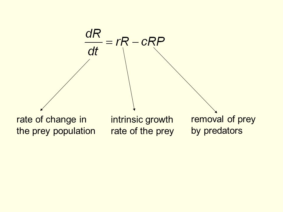 rate of change in the prey population. intrinsic growth.