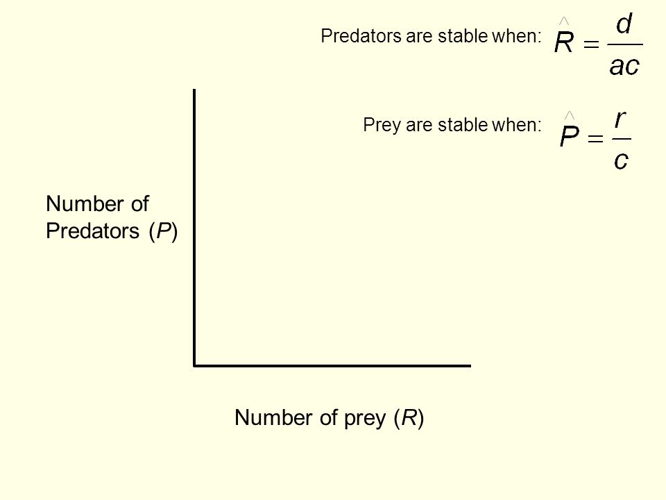 Number of Predators (P) Number of prey (R) Predators are stable when: