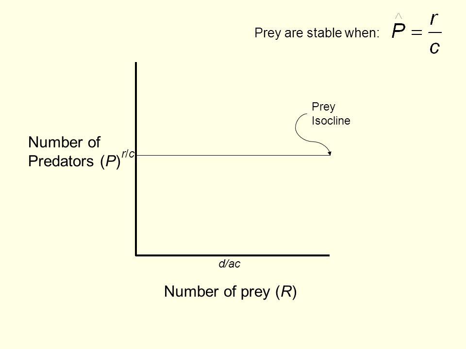 Number of Predators (P) Number of prey (R) Prey are stable when: Prey