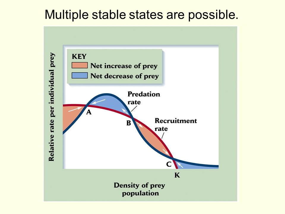 Multiple stable states are possible.