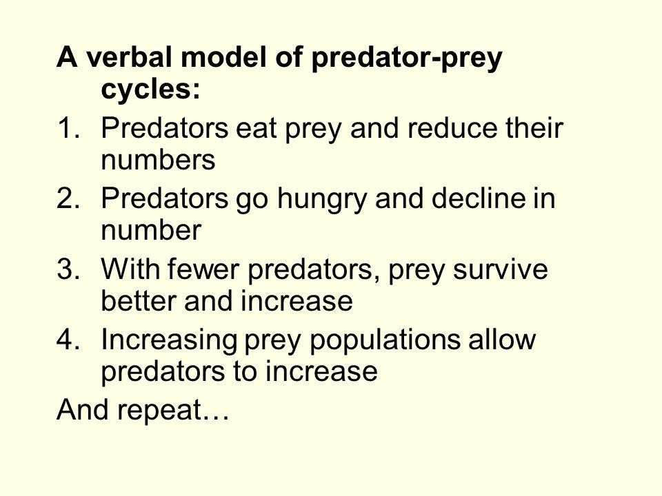 A verbal model of predator-prey cycles: