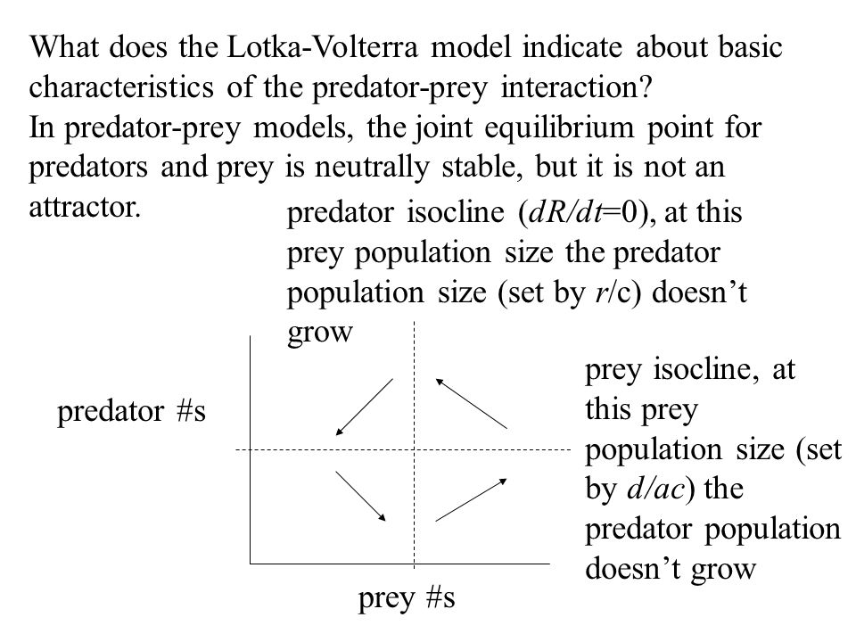 What does the Lotka-Volterra model indicate about basic characteristics of the predator-prey interaction