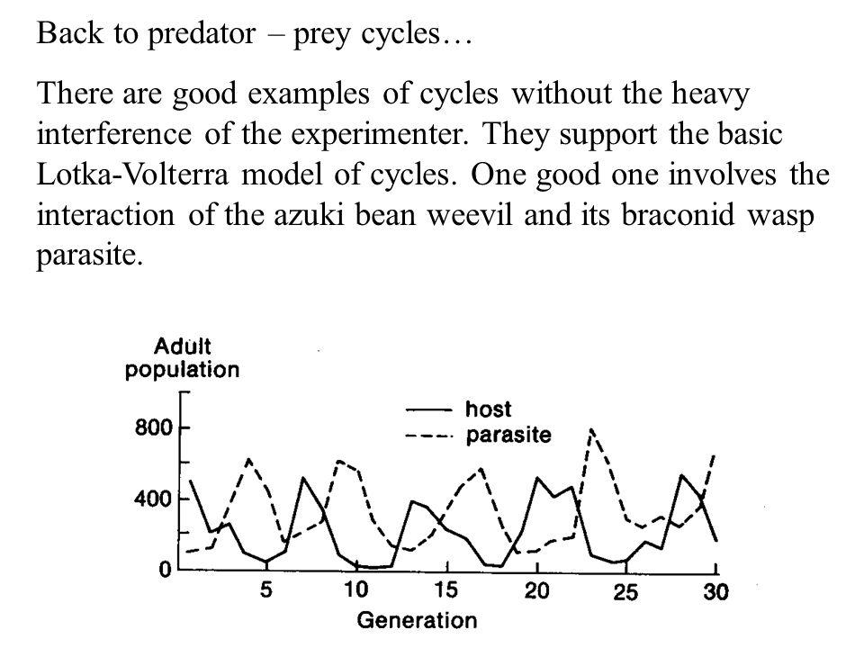 Back to predator – prey cycles…