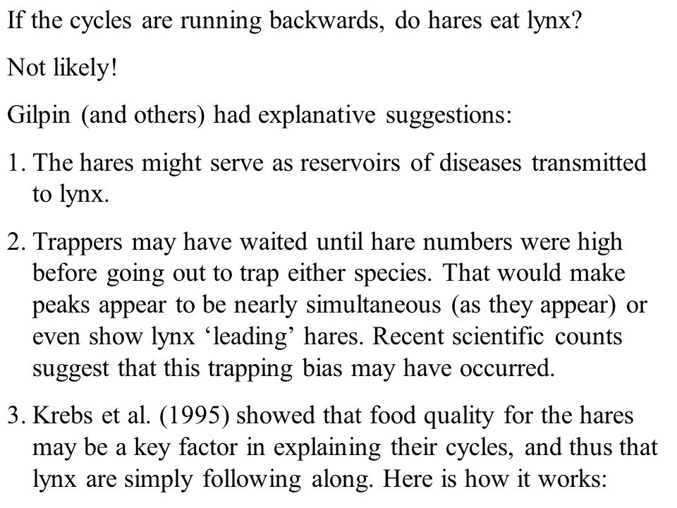 If the cycles are running backwards, do hares eat lynx