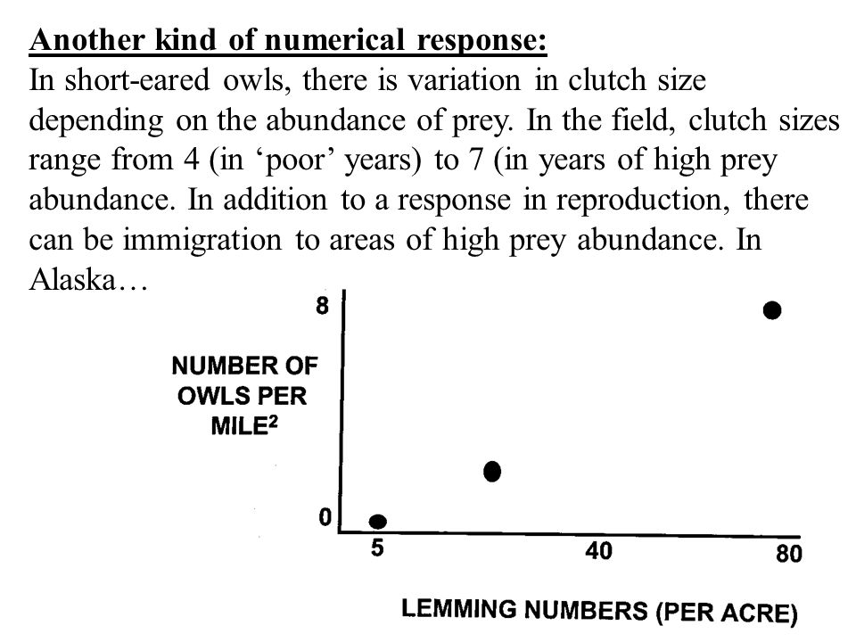 Another kind of numerical response: