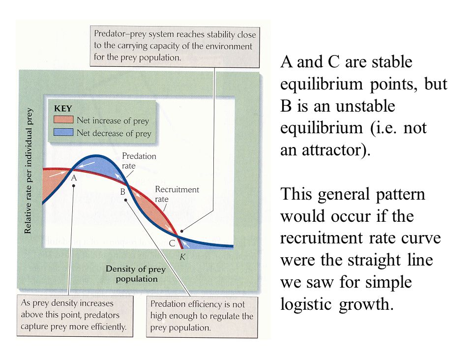 A and C are stable equilibrium points, but B is an unstable equilibrium (i.e. not an attractor).
