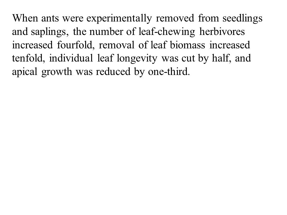 When ants were experimentally removed from seedlings