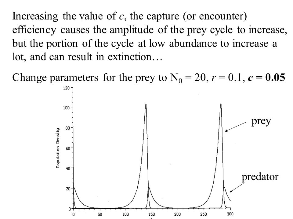 Increasing the value of c, the capture (or encounter) efficiency causes the amplitude of the prey cycle to increase, but the portion of the cycle at low abundance to increase a lot, and can result in extinction…