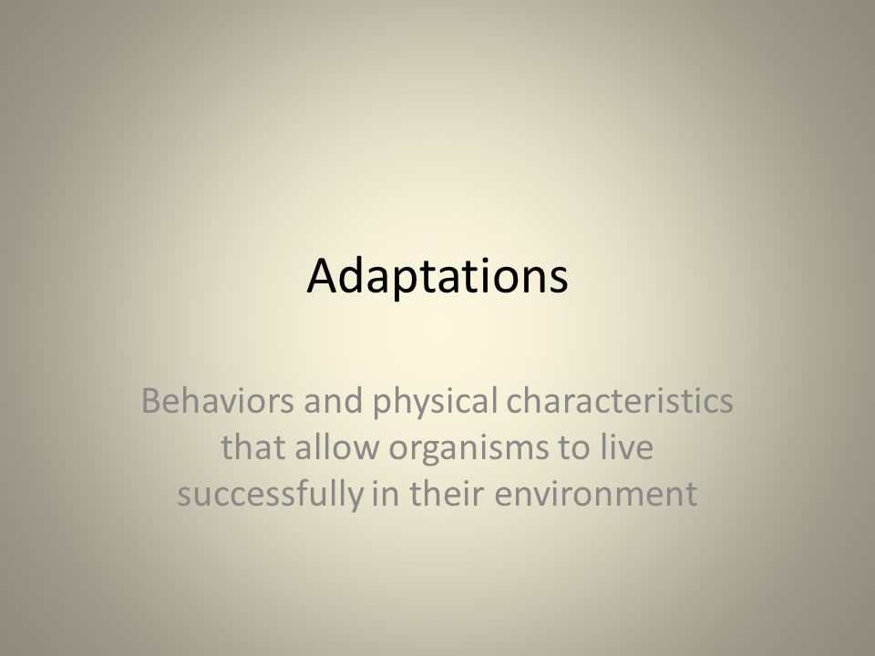 Adaptations Behaviors and physical characteristics that allow organisms to live successfully in their environment.