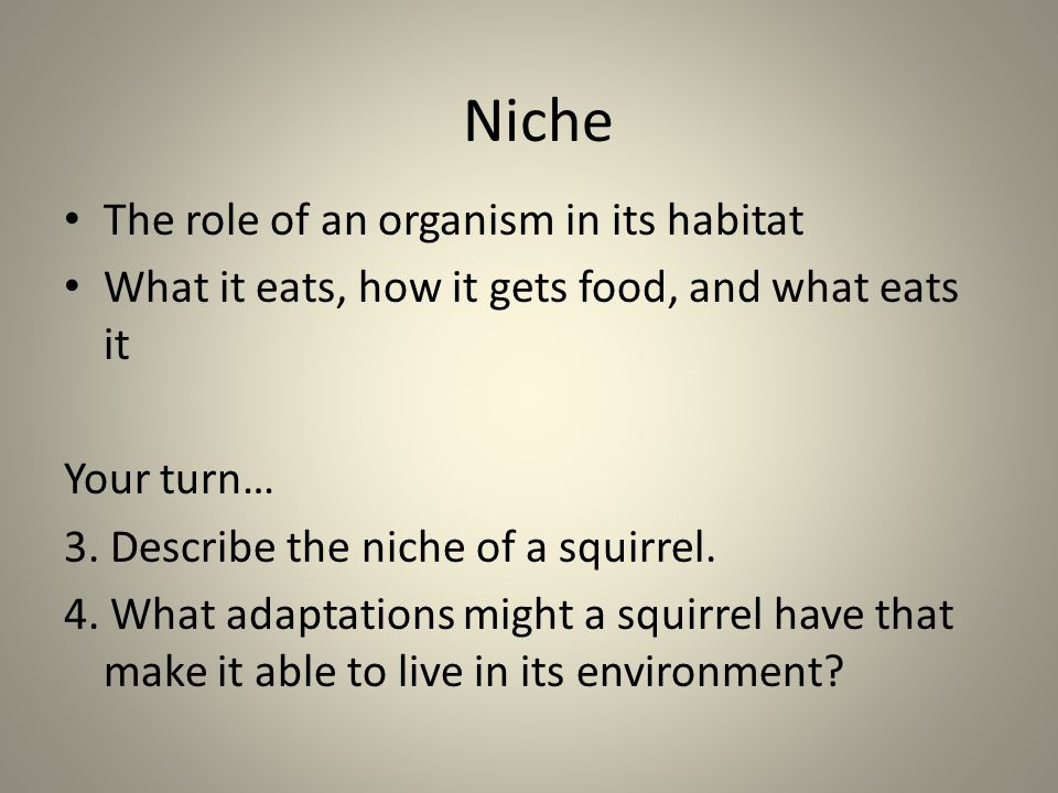 Niche The role of an organism in its habitat
