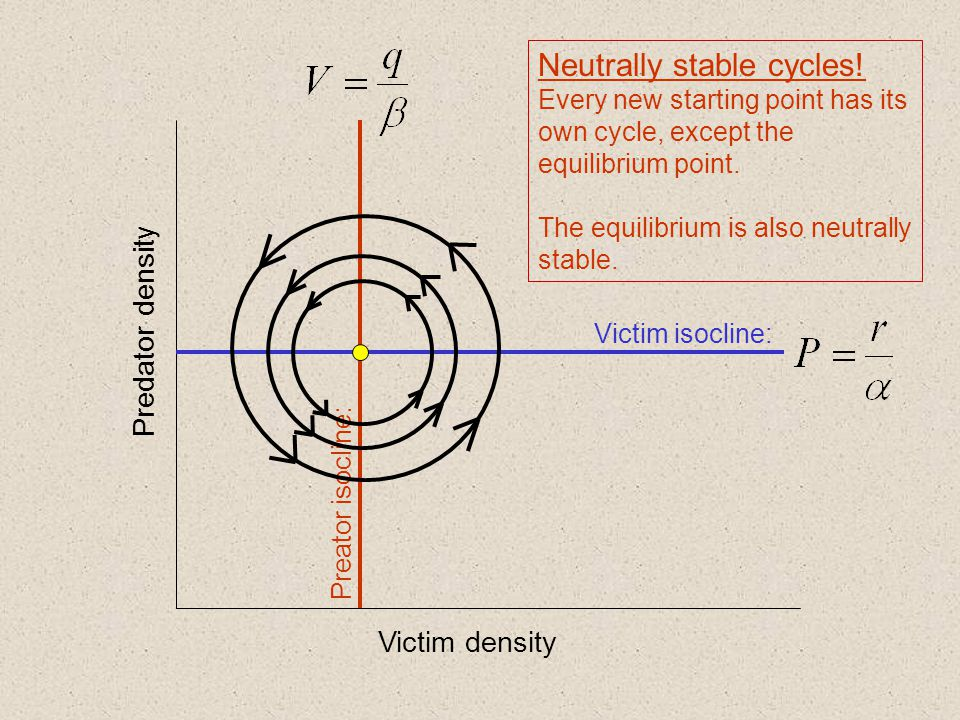 Neutrally stable cycles!