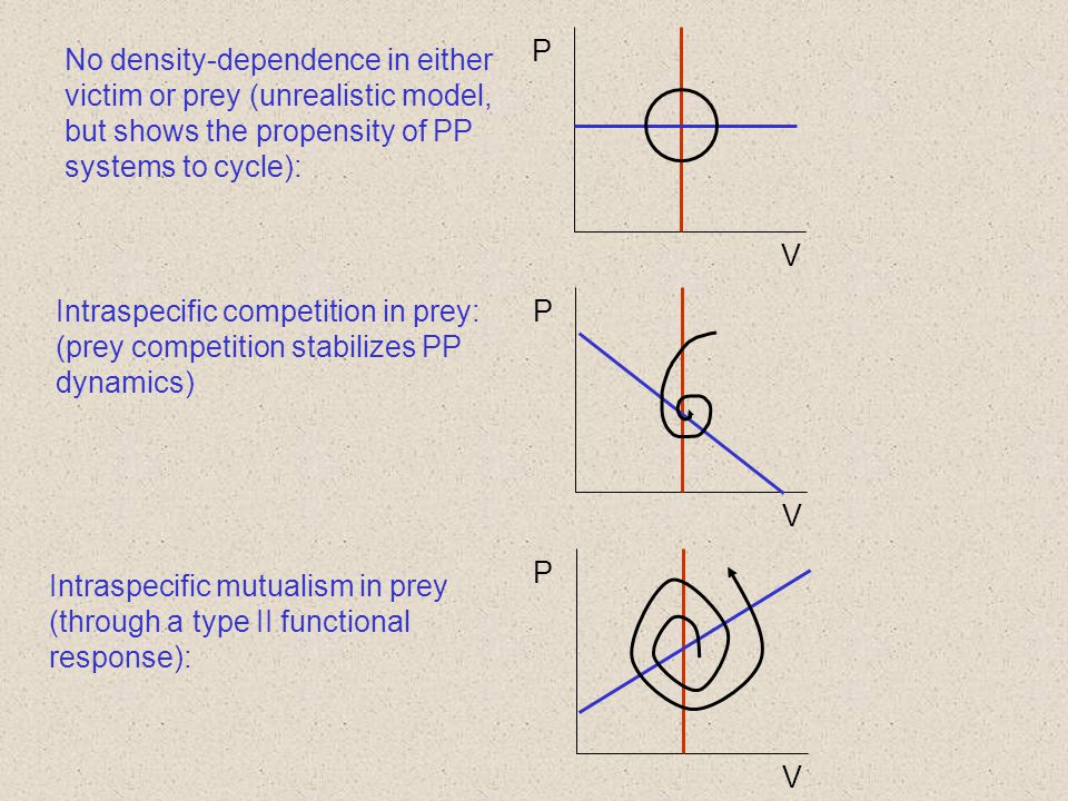 No density-dependence in either victim or prey (unrealistic model, but shows the propensity of PP systems to cycle):