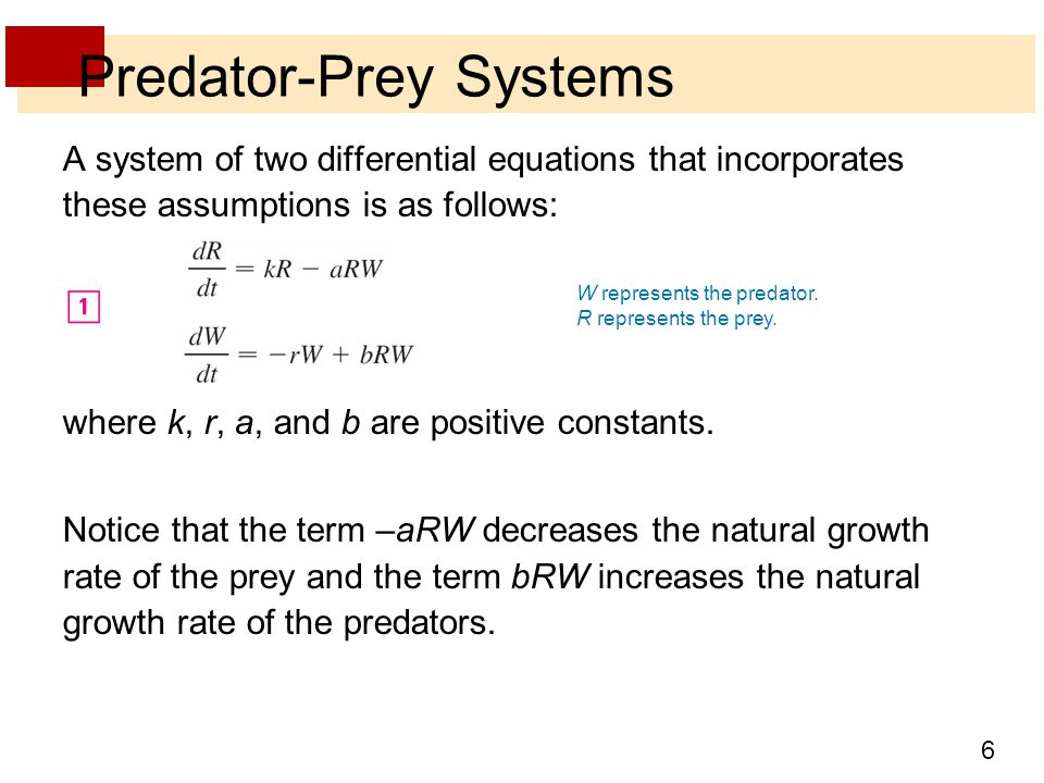 Predator-Prey Systems