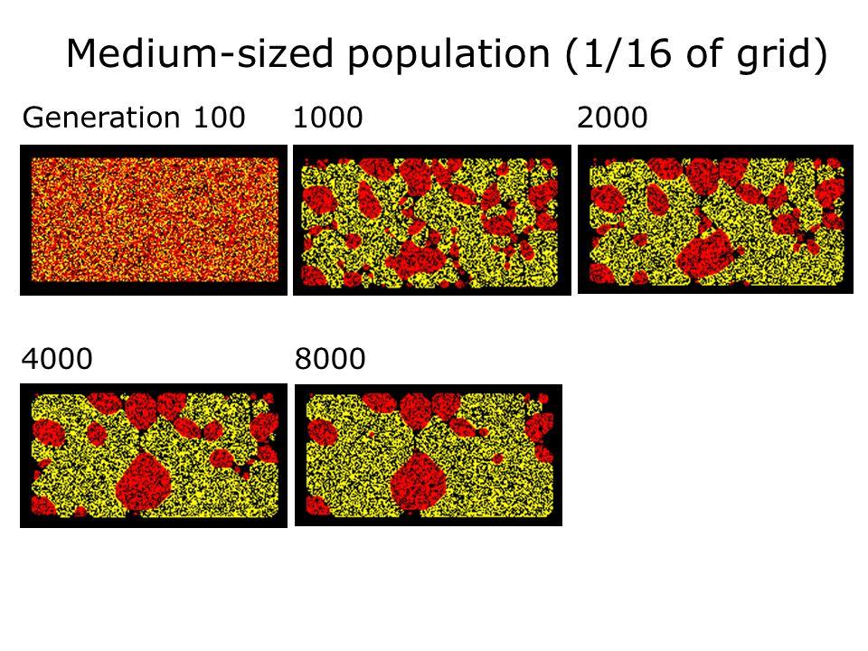 Medium-sized population (1/16 of grid)
