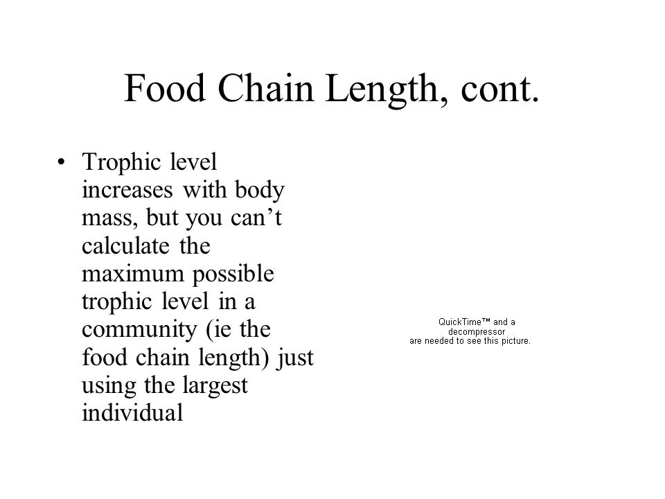 Food Chain Length, cont.