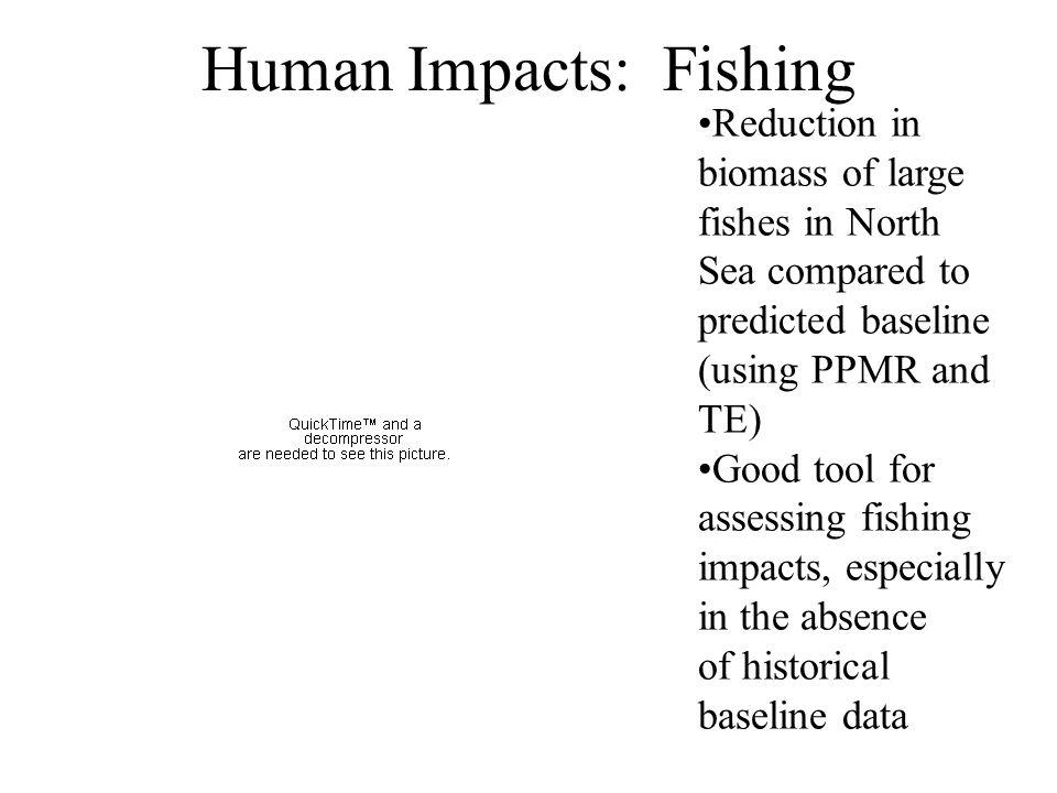 Human Impacts: Fishing