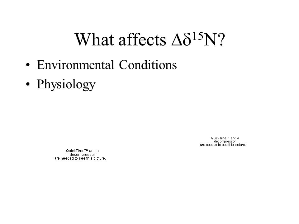 What affects 15N Environmental Conditions Physiology