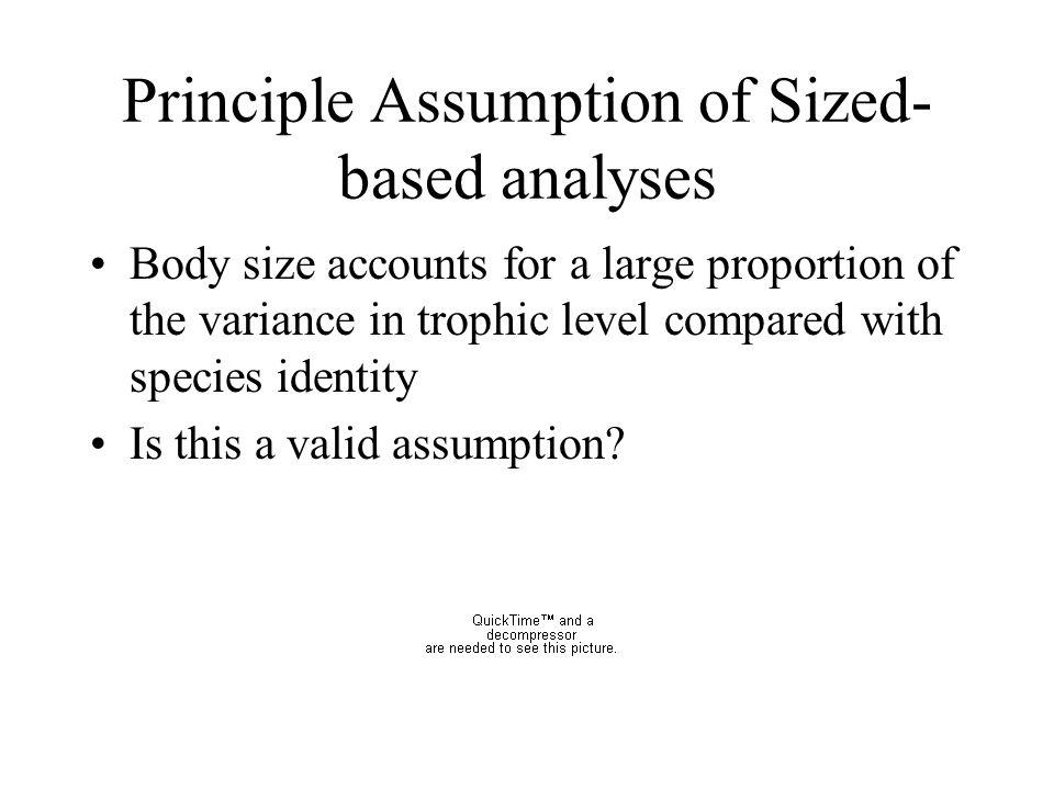 Principle Assumption of Sized-based analyses