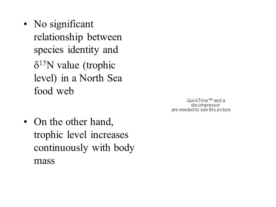 No significant relationship between species identity and