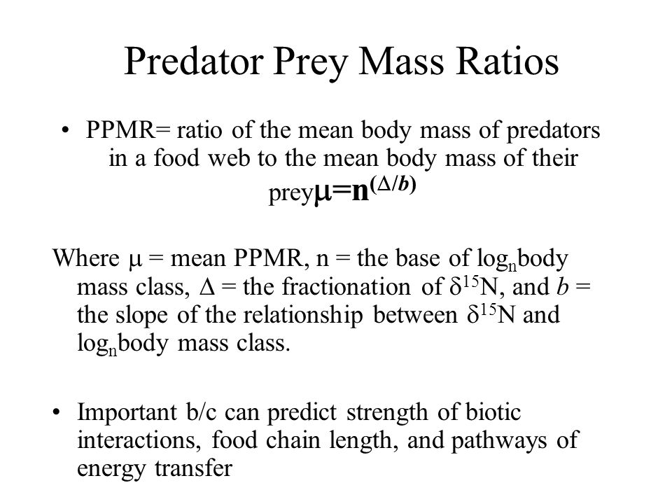 Predator Prey Mass Ratios