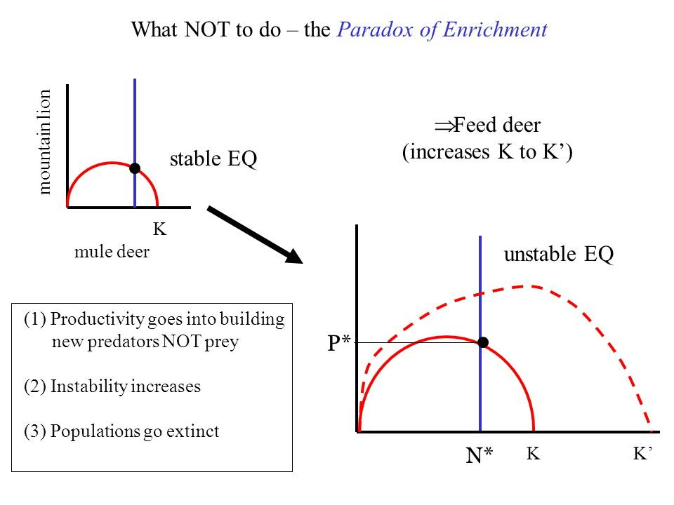 What NOT to do – the Paradox of Enrichment