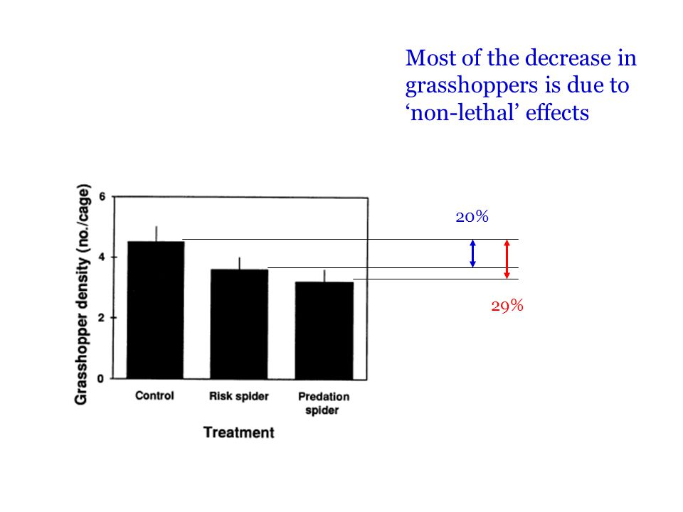 Most of the decrease in grasshoppers is due to 'non-lethal' effects