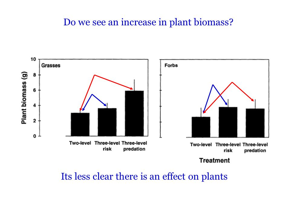 Do we see an increase in plant biomass