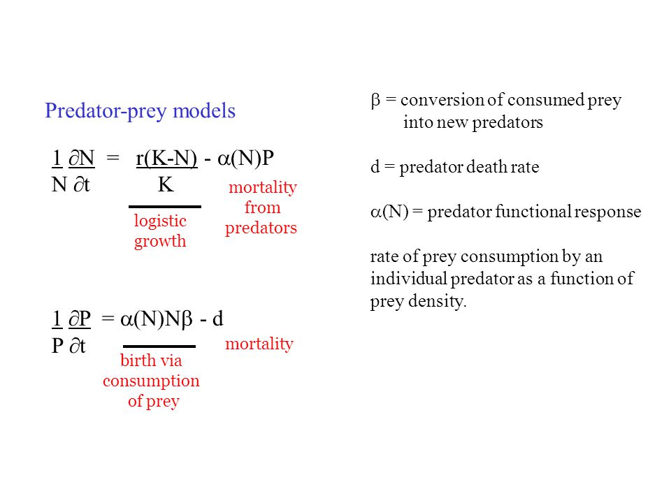 Predator-prey models 1 N = r(K-N) - (N)P N t K 1 P = (N)N - d