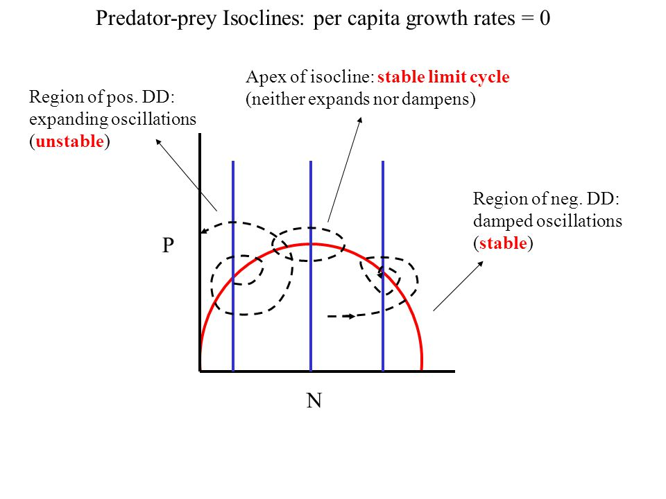 Predator-prey Isoclines: per capita growth rates = 0
